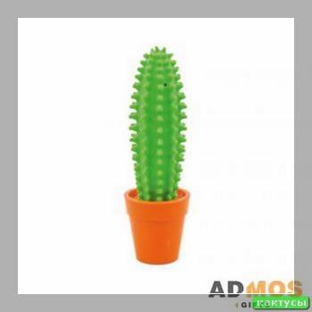 отросток кактуса