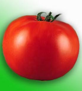 Калорийность помидор